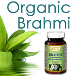 Brahmi - Brain Power For Deadlines