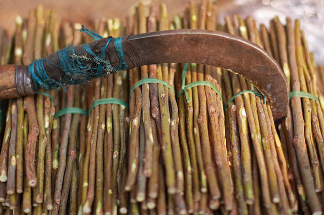 Pin-neem-sticks-By-Meanest-Indian